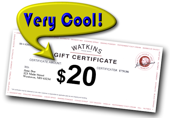 Your Business Naturally Independent Watkins Bronze Manager And